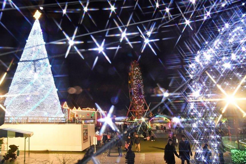 今年は高さ23メートルの巨大なクリスマスツリーがお目見えしたニューレオマワールド=丸亀市綾歌町(フィルター使用)