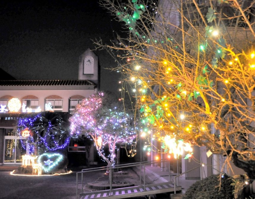 旧河内小では色とりどりのイルミネーションが静寂の夜を照らしている=三豊市山本町