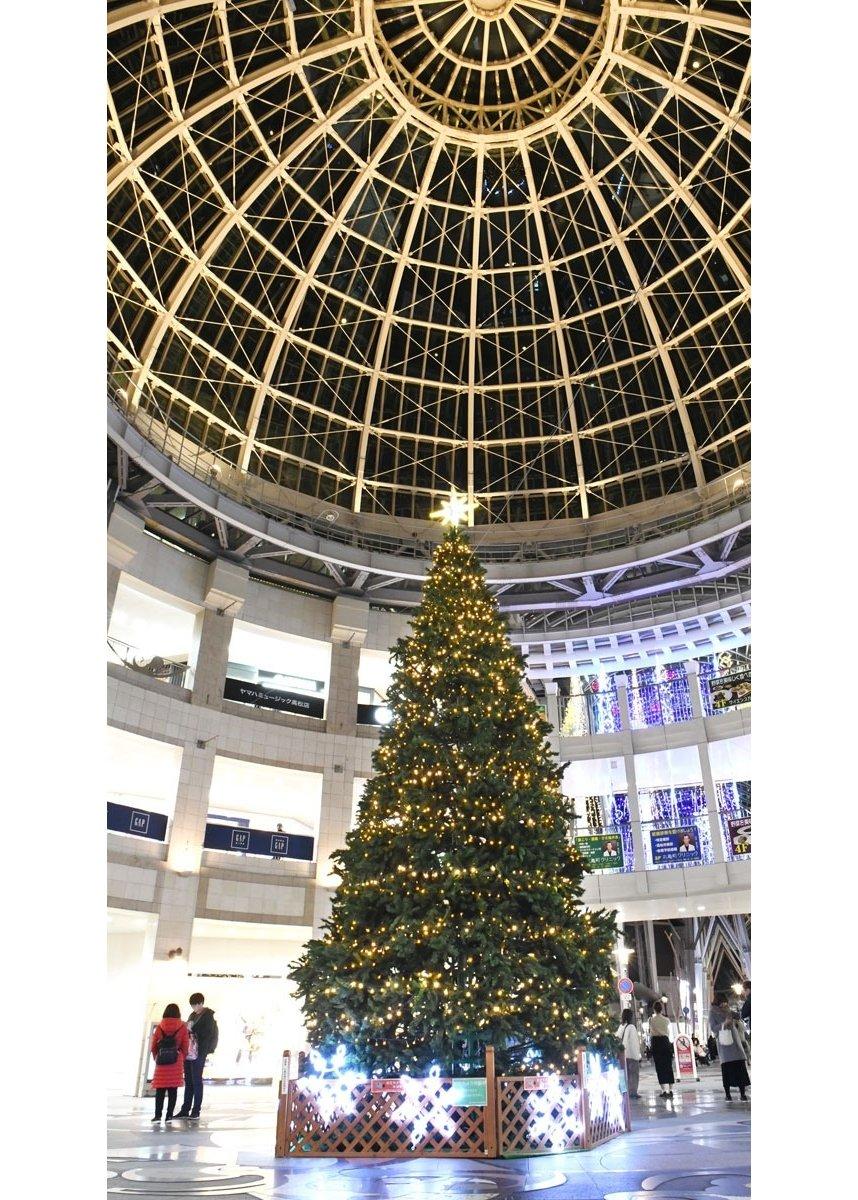 高松丸亀町壱番街ドーム広場を彩る大きなクリスマスツリー。買い物客らの目を引いている=高松市