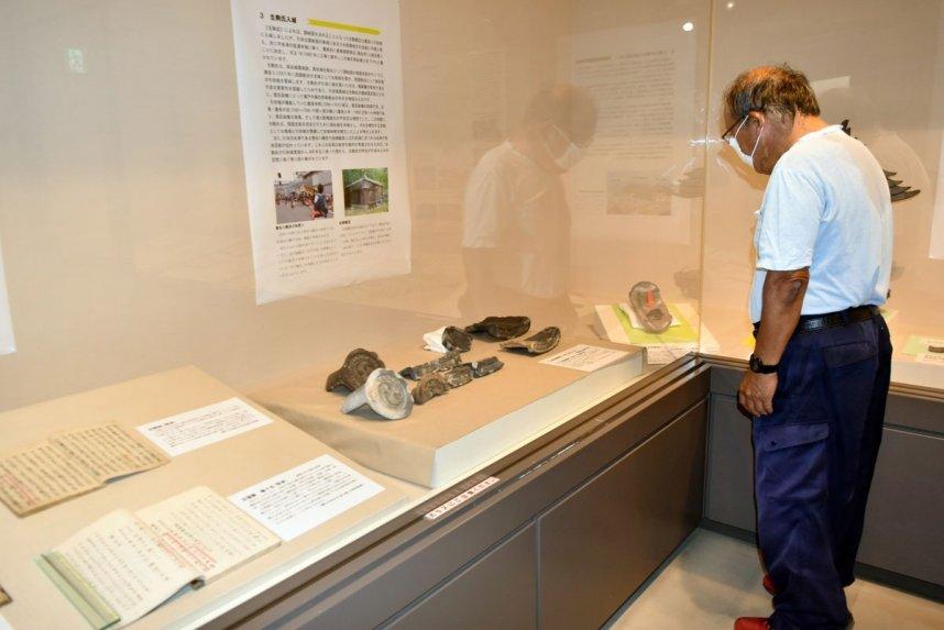 国史跡指定を記念して開かれている引田城跡にスポットを当てた特別展=香川県東かがわ市引田、東かがわ市歴史民俗資料館
