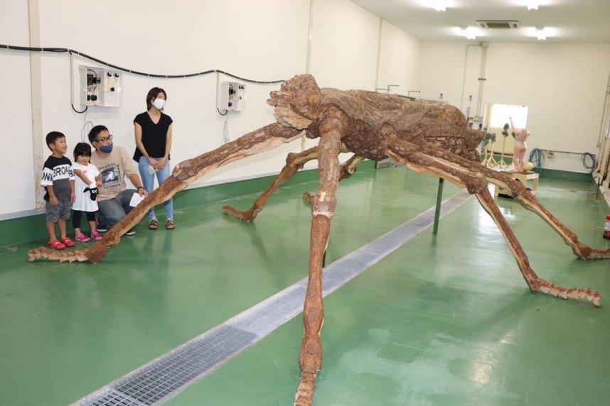 昆虫ナナフシを巨大化した木彫作品を楽しそうに鑑賞する家族連れ=香川県小豆島町神浦